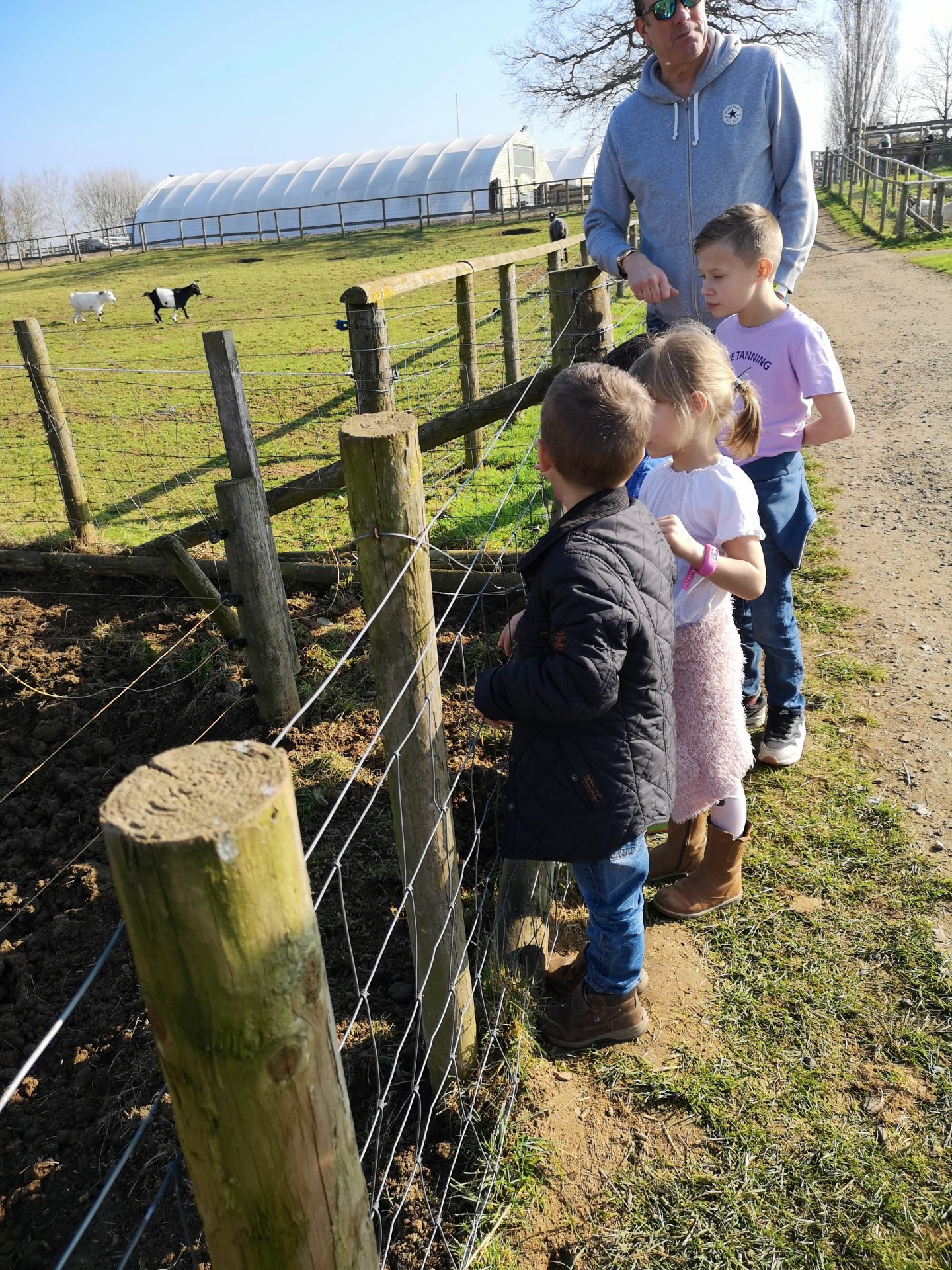 Willows Activity Farm